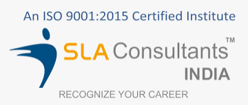 Structured Learning Assistance Consultants India Pvt.Ltd. logo