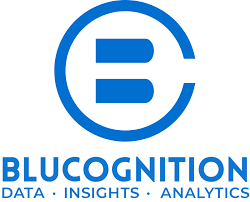 BLUCOGNITION PRIVATE LIMITED logo